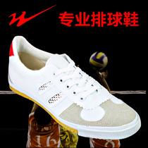 双星排球鞋男专业五米三项训练鞋防滑晨练拔河比赛专用鞋帆布球鞋