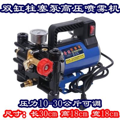 Portable 12V24V48V60V220 volt electric sprayer fruit tree double cylinder plunger sprayer pump agricultural high pressure
