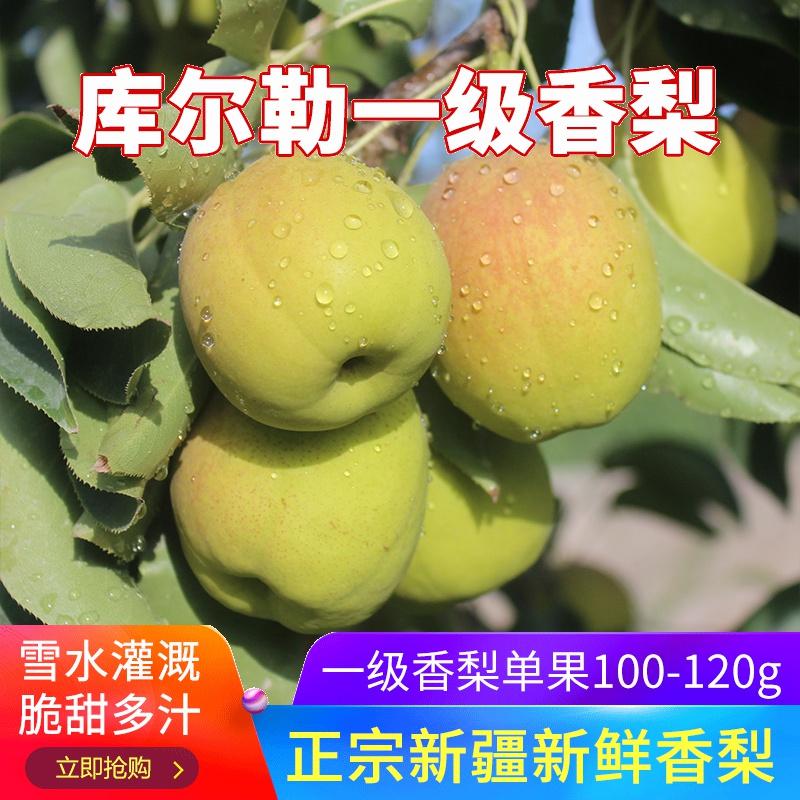 新疆库尔勒香梨5斤一级新鲜水果梨子整箱包邮应季时令孕妇脆雪梨