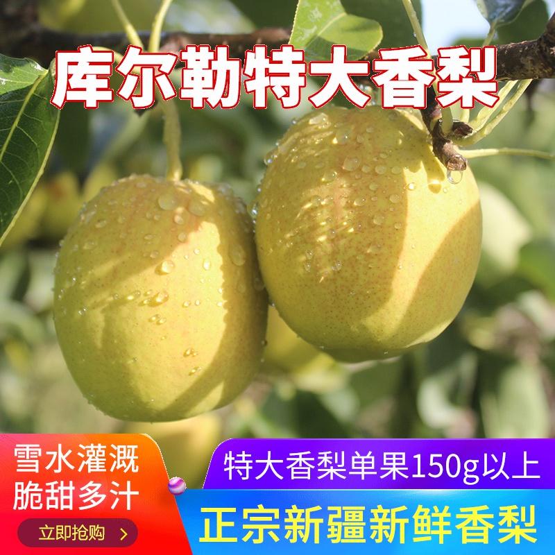 【新疆特产】库尔勒香梨特大8.5斤梨子新鲜水果整箱梨子果农直供