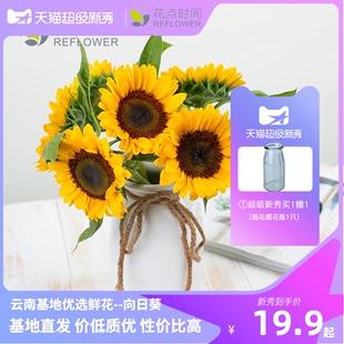 花點時間向日葵 太陽花鮮花速遞同城配送雲南直髮玫瑰花家用花束