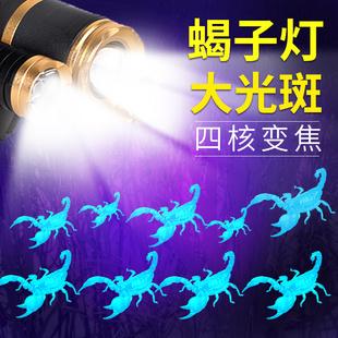 蠍子燈專用捕蠍紫光超亮抓捉照蠍子燈白加紫光頭戴式強光手電頭燈