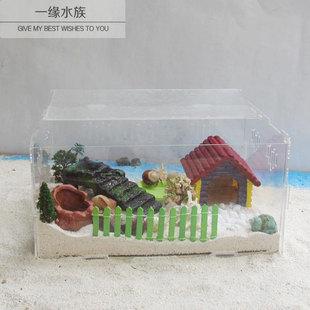 包邮 新手活体饲养箱用品冬天全套用具活体宠物 陆地寄居蟹套装