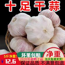 2020新鲜大蒜头5斤紫白皮低价包邮农家自种10足干蔬菜种子籽助农