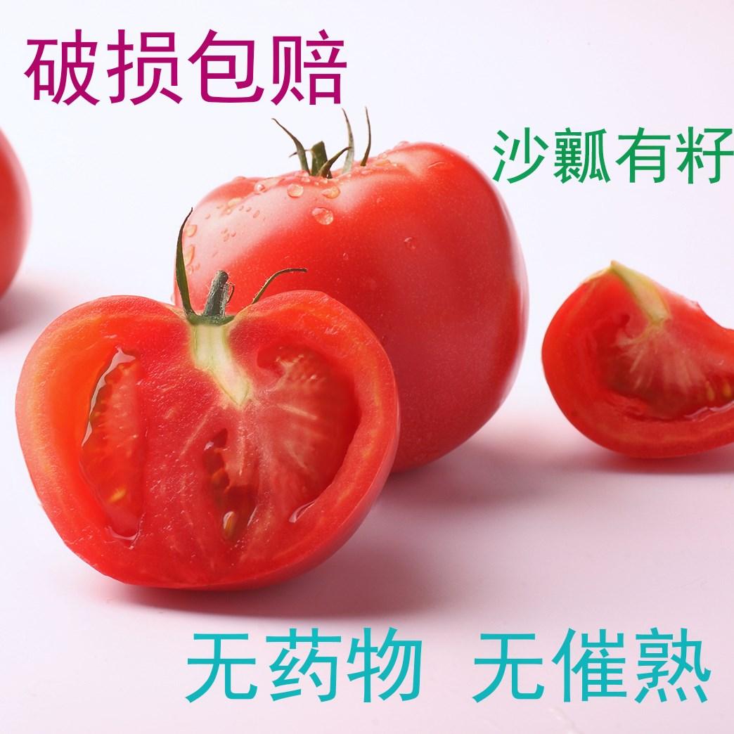 【出口品质】新疆西红柿新鲜 自然熟西红柿 水果番茄 5斤顺丰包邮