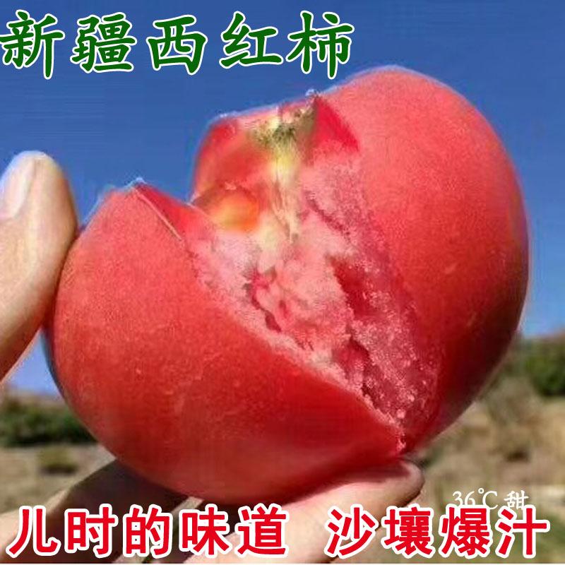 新疆吐鲁番沙瓤西红柿新鲜纯天然5斤包邮爆汁大番茄
