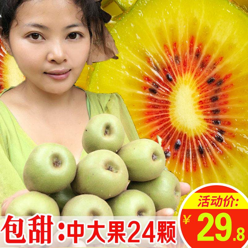 四川蒲江红心猕猴桃5奇异果10浦徐香绿黄心野生苍溪上虞斤中果