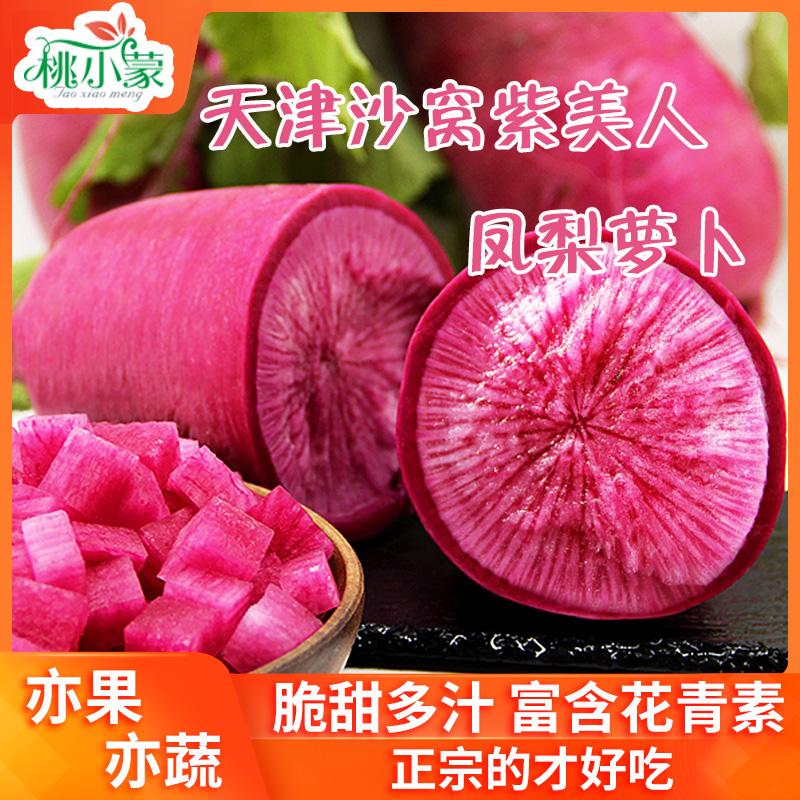 天津凤梨萝卜紫美人5斤新鲜现拔正宗沙窝脆甜红水果心里美罗卜