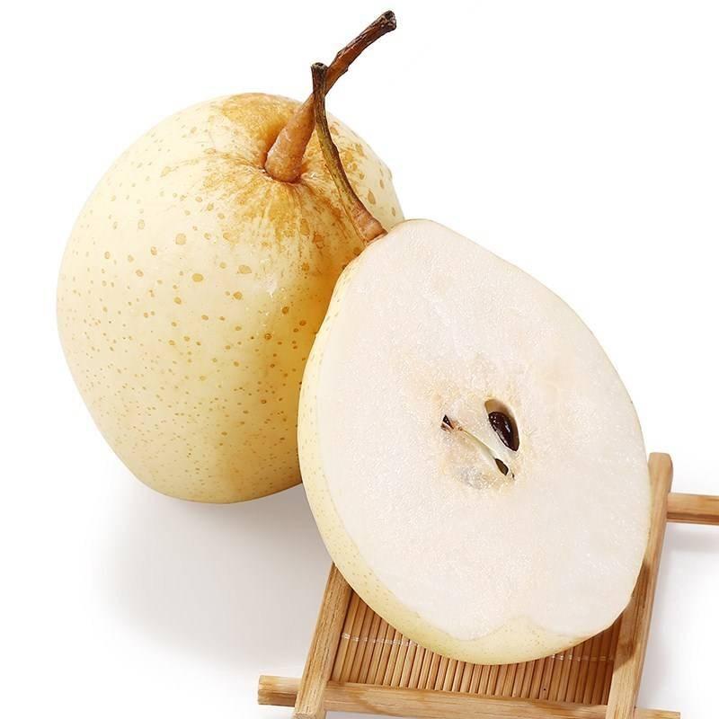 河北鸭梨当季新鲜水果5斤装(单果200g起)果园直发