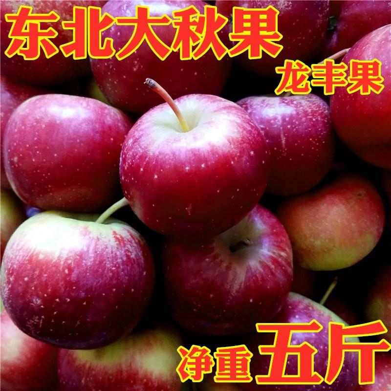 东北的大秋果脆沙果龙丰果龙秋果特产新鲜水果非海棠果酸甜脆包邮