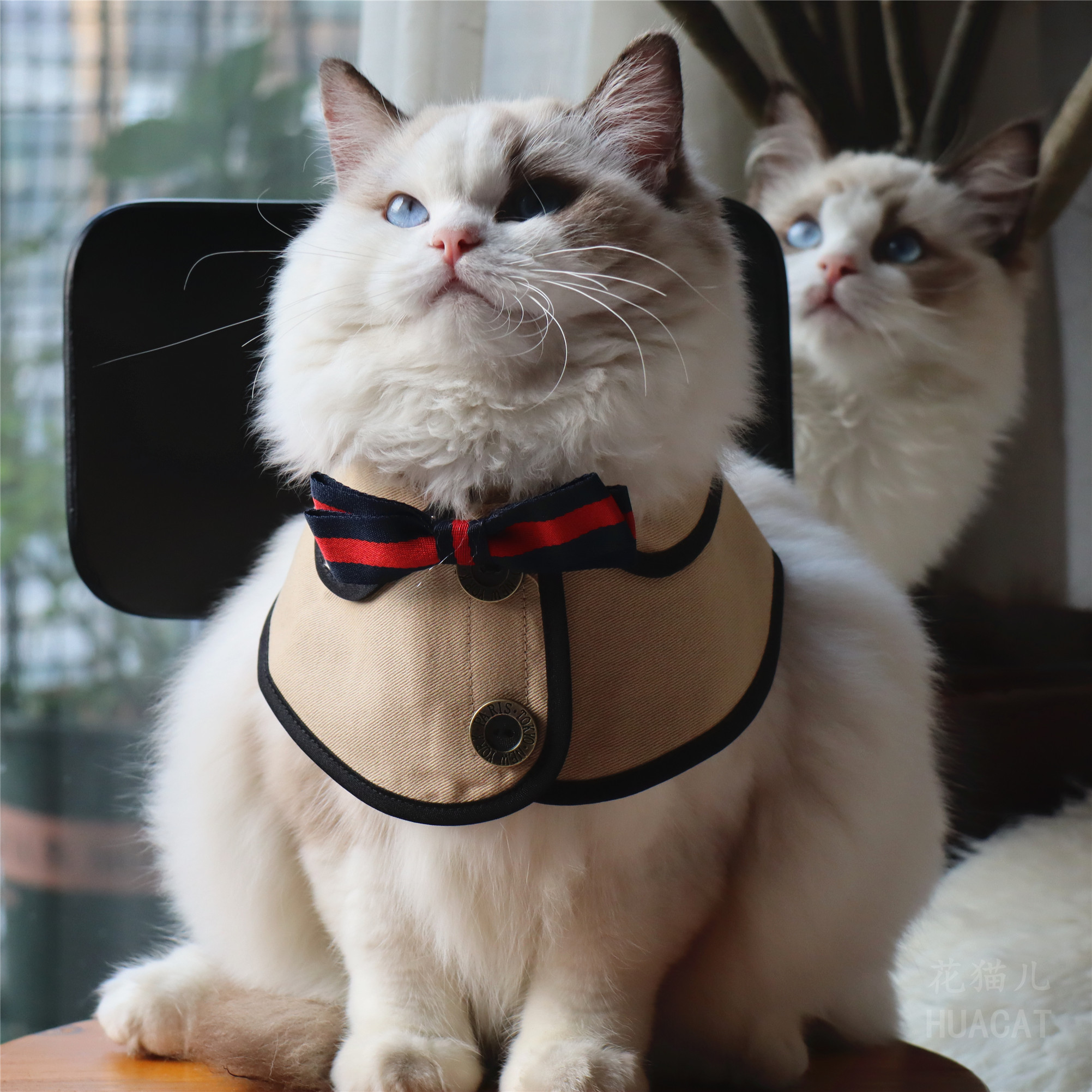 Flower cat British style pet cat dog fake collar shawl Bib accessories pet bow tie saliva towel