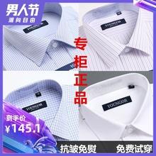 衬衣 格子条纹中年大码 男免烫纯棉商务正装 男士 衬衫 雅戈尔长袖 新款