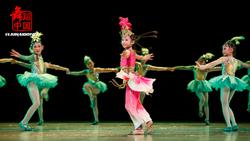 正品新款第八届小荷风采《阿米娜的果园奇遇》儿童舞蹈表演服演出