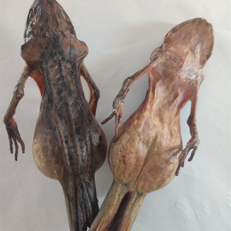 雪蛤干东北林蛙油干蛤蟆干11克