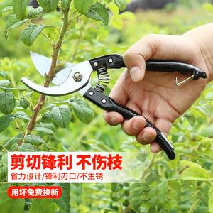 园林园艺剪子果树修花修枝剪刀修剪树枝进口粗枝剪省力修枝剪花剪