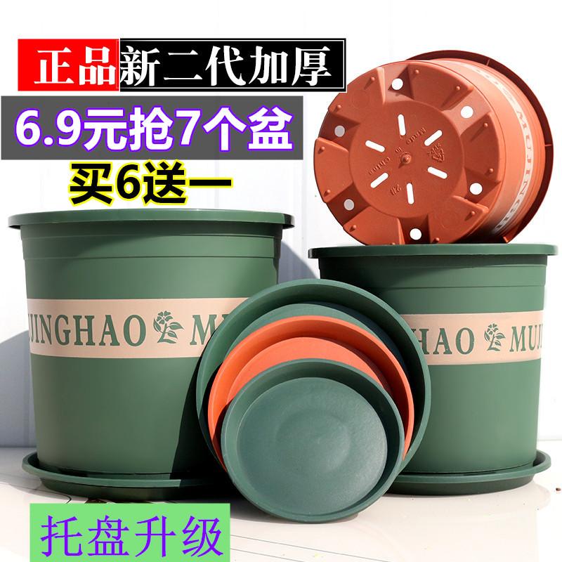 新款二代矮胖塑料绿萝月季加仑盆