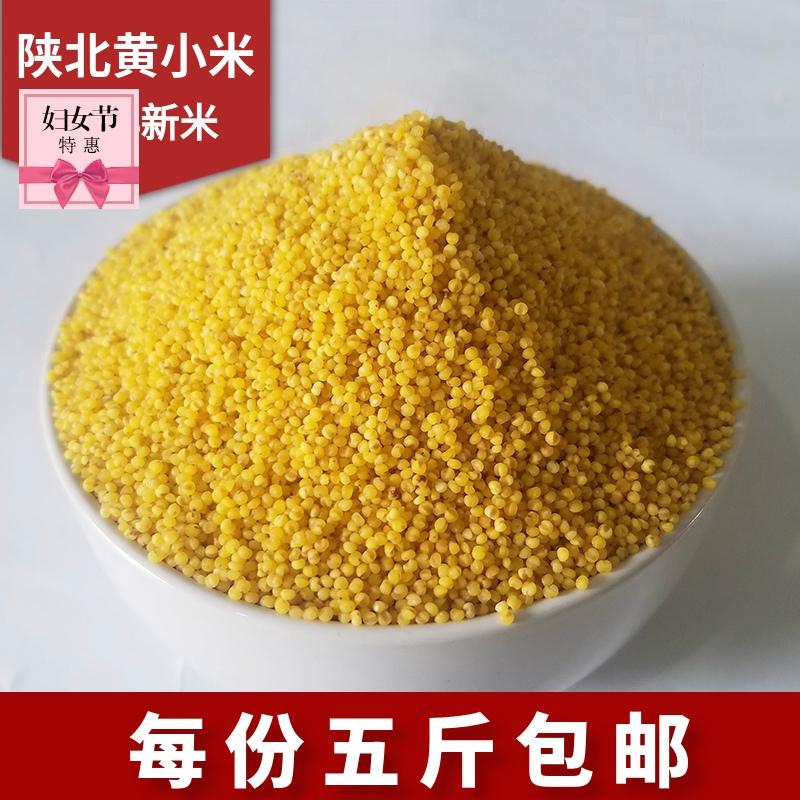 小米新自产21年今年陕北米脂农家小黄米月子米粥新款有机五斤包邮