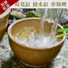 廚房水缸醬缸 睡蓮花盆土陶睡蓮碗蓮盆家用荷花缸養魚庭院造景老式