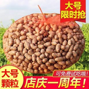 现挖农铁棍山药豆5斤装大号特大2021焦作新鲜怀山药豆山药蛋