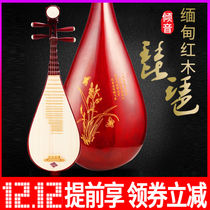 Tilt Mahogany pipa Beginner Adult introduction Practice children plucked small PIPA professional Examination Class national musical instrument