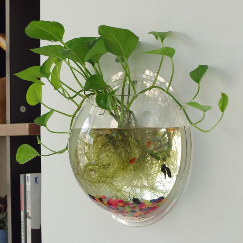 吊兰悬挂式卧室透明壁挂绿萝创意花盆墙上水培挂墙壁鱼缸装饰,可领取1元天猫优惠券