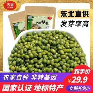 绿豆400g*2袋新货东北农家绿豆杂粮 薄皮绿豆 绿豆沙绿豆汤粥原料