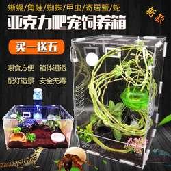 寄居蟹饲养箱爬虫饲养盒透明亚克力蜘蛛守宫角蛙甲虫造景宠物爬宠