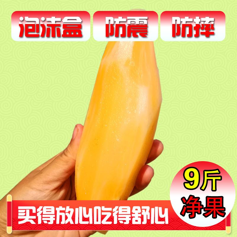 【泡沫盒发货】云南特产雪莲果新鲜水果清甜脆现挖现发应季水果