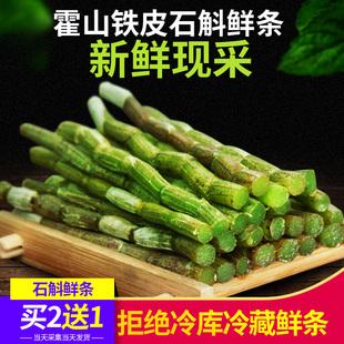 养生茶中药材 正品 霍山铁皮石斛鲜条500g新鲜枫斗干条仿野生礼盒装