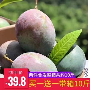 云南青芒果当季新鲜水果甜心芒果批发攀枝花凯特芒果 带箱约10斤