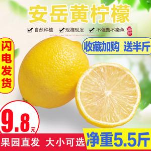 安岳黃檸檬新鮮水果現摘檸檬青泡水批發包郵一二級皮薄檸檬香水