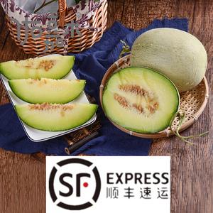 【顺丰包邮】海阳网纹瓜3斤哈密瓜