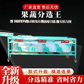 果蔬大枣设备水果分级机分选分拣机选果红枣加工滚筒式部分分级筛