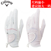 Callaway Carraway Golf Gloves Ms. Golf Hands Gloves STYLE DUAL
