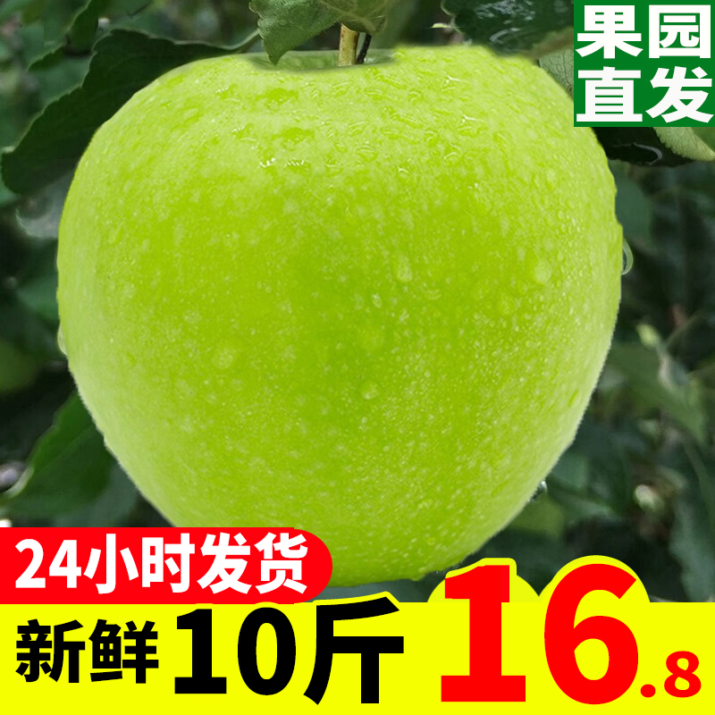 Shanxi green apple fresh fruit in the season 10 jin package mail season pregnant women sour sweet ugly duckweed green Fuji