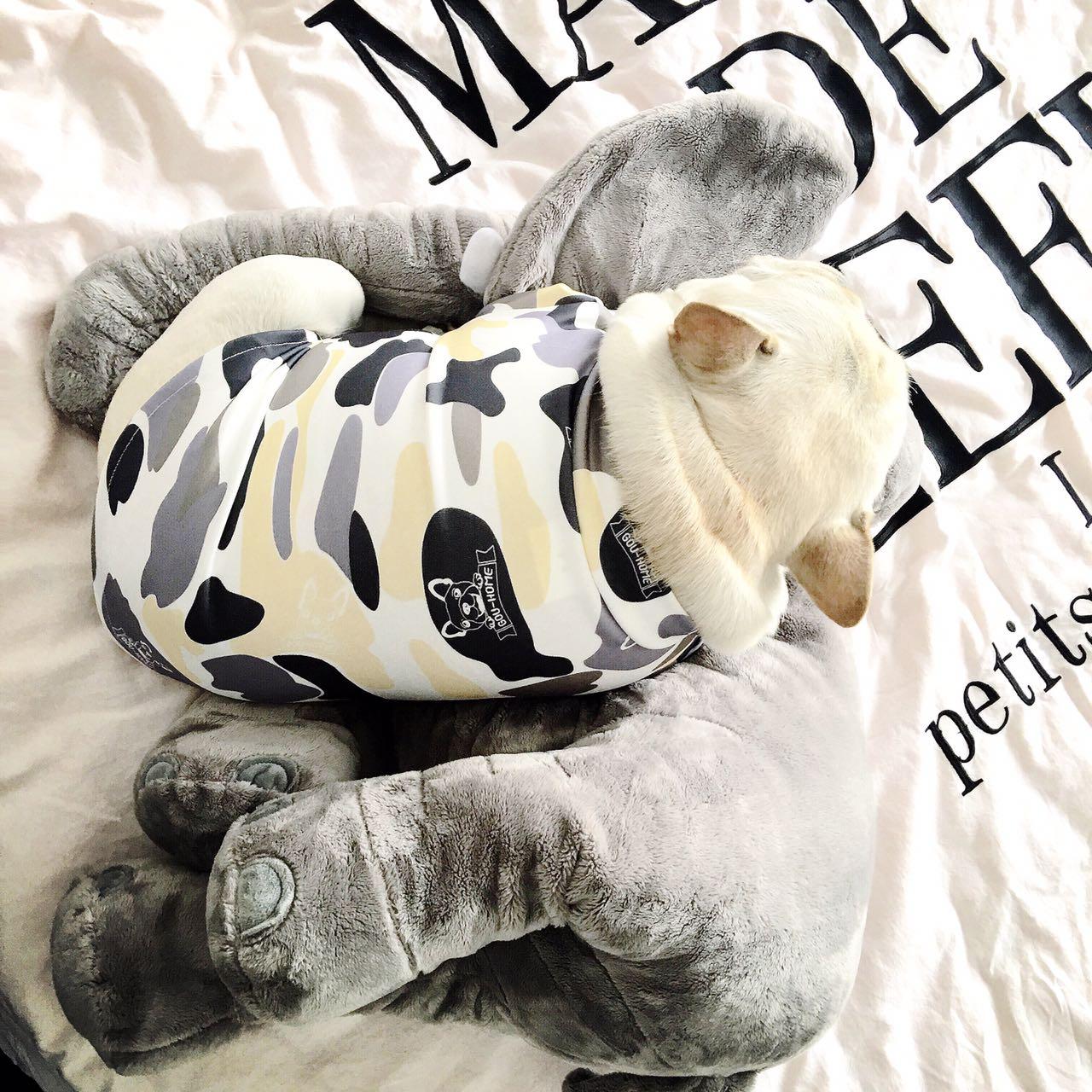 Собака одежда франция борьба весна T футболки пакистан брат камуфляж шаблон английский корова небольшой собаки тедди топорище база борьба корова собака лето