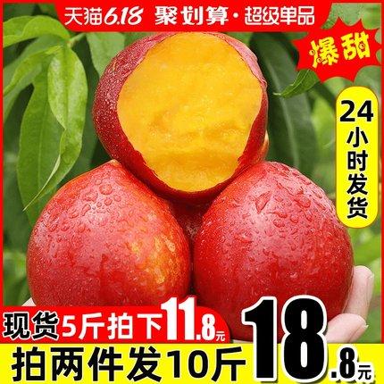黄心油桃现货5斤新鲜水果当应季大桃子整箱包邮孕妇脆甜非水蜜桃