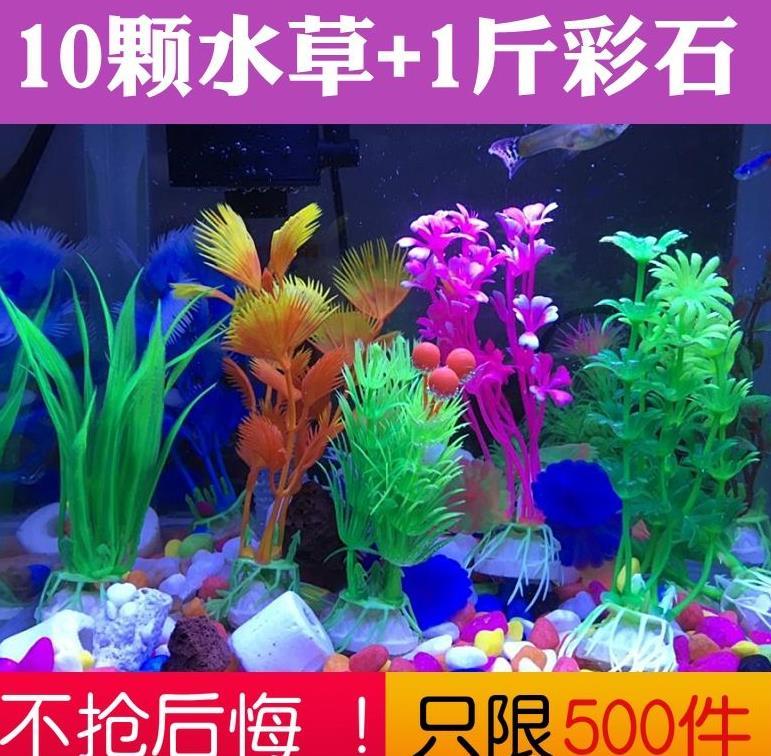 细叶阔叶装饰植物鱼池金鱼缸装饰品水池小叶小型鱼缸里的水草
