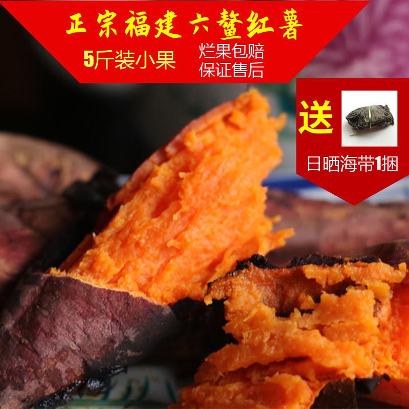 热销福建六鳌大叶红心番薯5斤小果地瓜农家山芋蜜甜漳浦沙地板栗