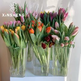 韩式高透明花桶PC耐摔花瓶花店用品专业醒花养花材料家居插花装饰