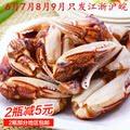 醉蟹钳600g大蟹脚梭子蟹脚即食醉蟹盐城海鲜罐头宁波特产螃蟹钳。