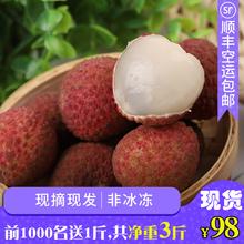【510发货】新鲜水果荔枝妃子笑当季
