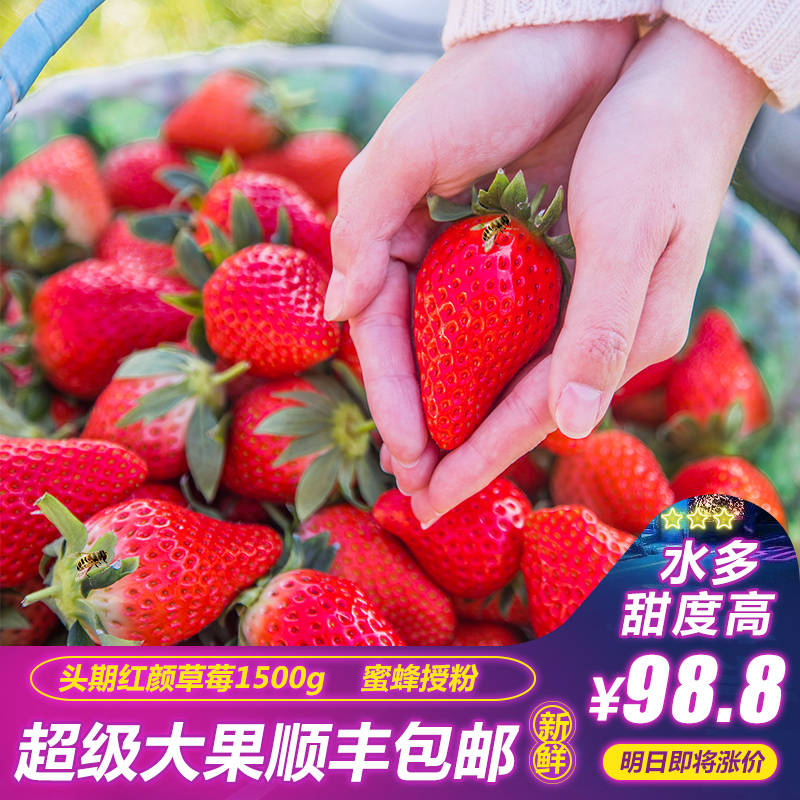 草莓新鲜3斤水果礼盒大果新鲜现摘奶油牛奶草莓顺丰包邮红颜草莓