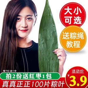 粽叶粽子叶免邮新鲜干大粽叶箬叶烘干端午包粽子的叶子手选100张