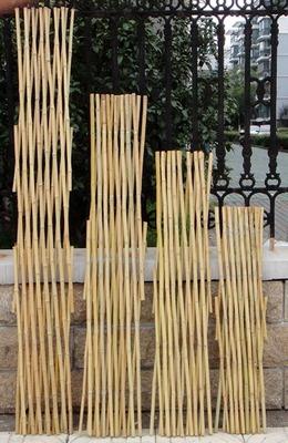 户外小栅栏围栏月季植物爬藤竹子花支架花园竹竿阳台伸缩竹条篱笆