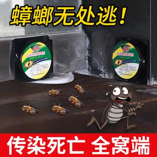蟑螂药家用无毒厨房灭杀小强除蟑螂屋克星胶饵贴剂捕捉神器一窝端品牌