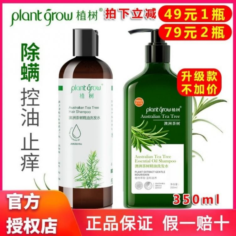 澳洲茶树精油洗发水抗螨止痒清爽控油植物精华温和修复洗发露