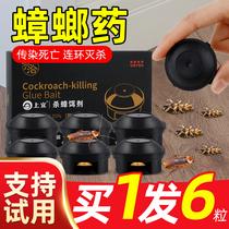 兴洽蟑螂要家用一窝端杀蟑胶饵剂厨房强力除蟑通杀大小通杀非无毒
