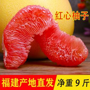 福建平和管溪红心柚子红肉蜜柚净重9斤大柚子新鲜水果黄金柚包邮