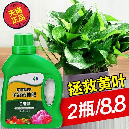 营养液花肥家用通用型盆栽植物绿萝发财树富贵竹多肉水培花卉肥料